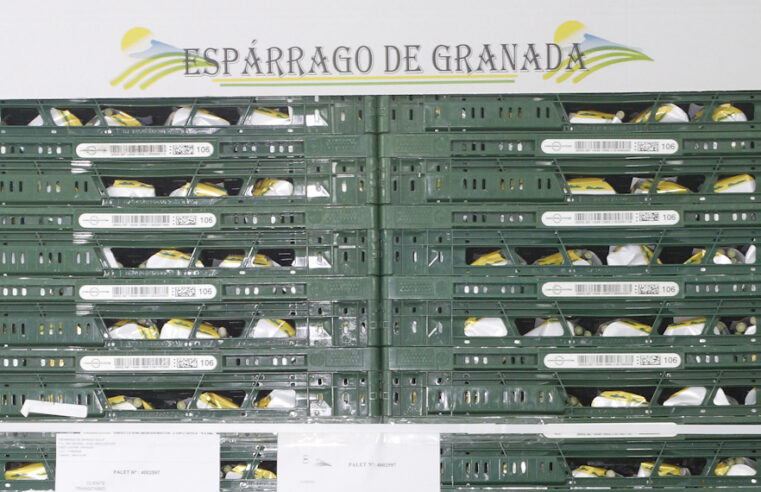 Convocatoria de la Asamblea General Extraordinaria de Espárragos de Granada SCA 2º Grado
